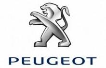 Autovrakoviště Peugeot - externí odkaz